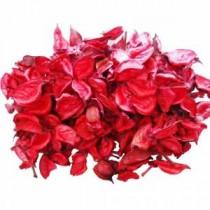 350 ADET Dekoratif Renkli Yapay Gül Yaprakları Kurusu