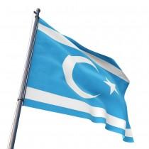 Türkmen Bayrağı (70x105 cm)